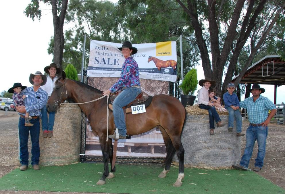 Keep up with all Dalby Australian Stock Horse Sale highlights