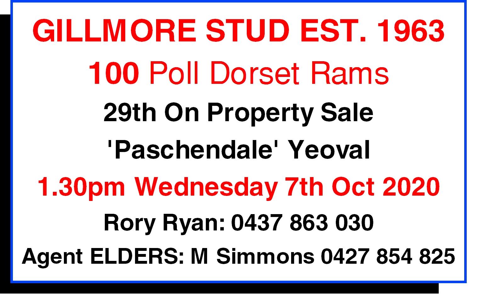 Gillmore Poll Dorset Ram Sale