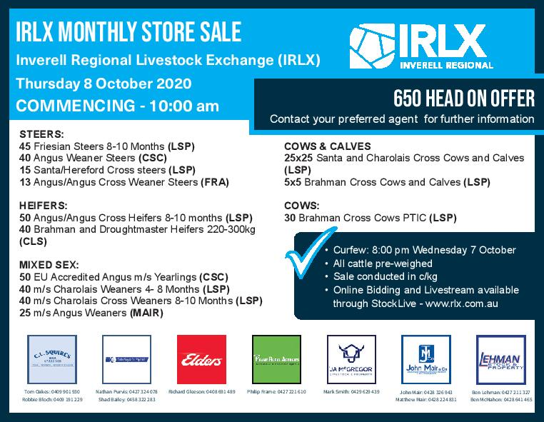 Inverell Monthly Store Cattle Sale