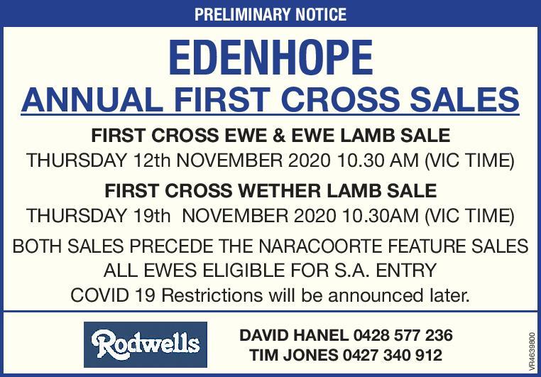 Edenhope Annual First Cross Ewe Sale