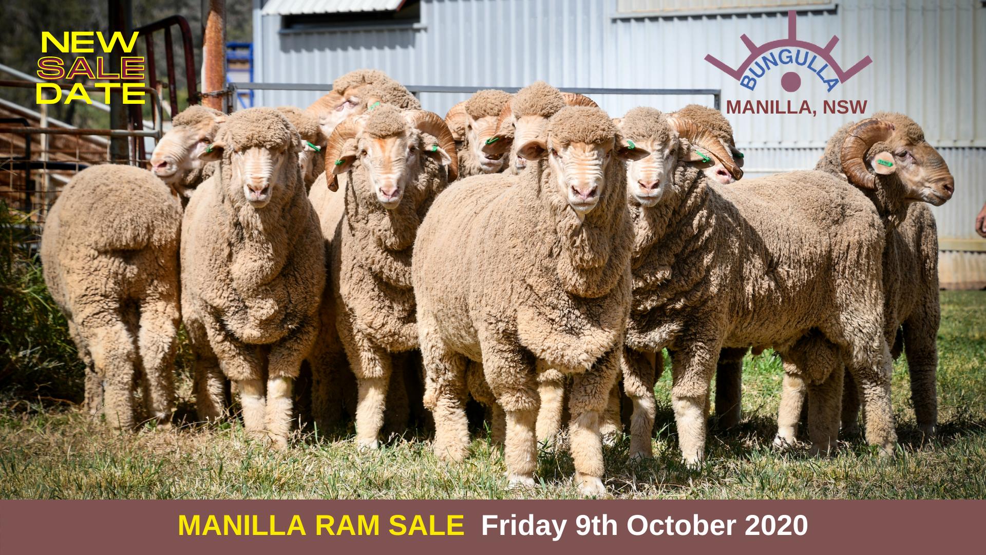 Annual Ram Sale