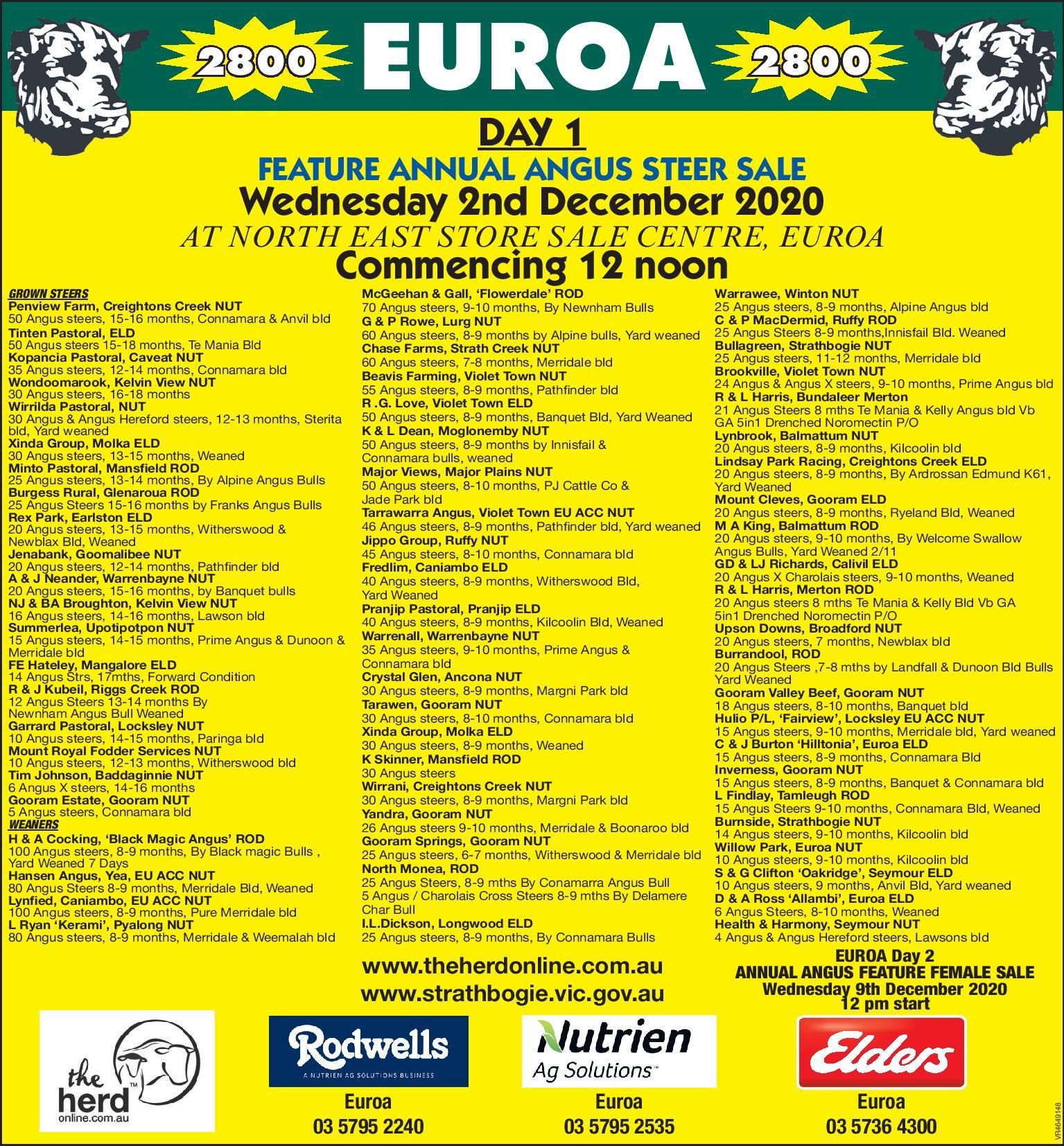 EUROA  DAY 1 FEATURE ANNUAL ANGUS STEER SALE