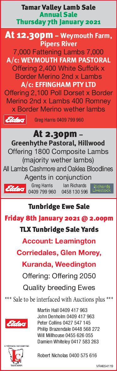 Tamar Valley Lamb Sale Annual Sale, Greenhythe Pastoral, Hillwood Tasmania