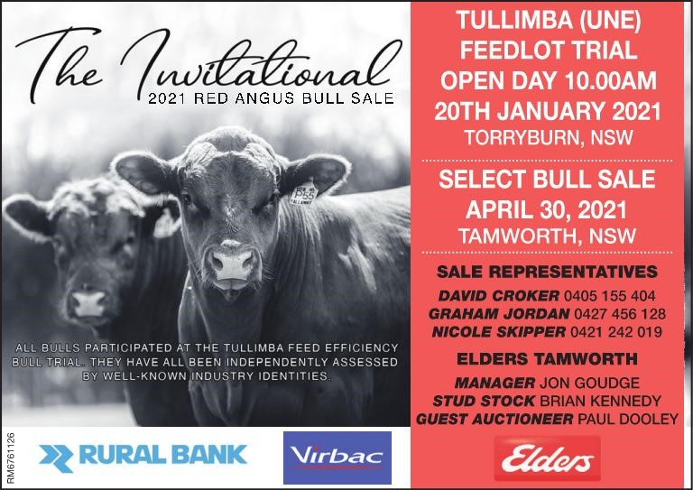 The Invitational 2021 Red Angus Bull Sale
