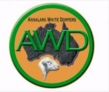2021 ANNALARA WHITE DORPER STUD & FLOCK SALE