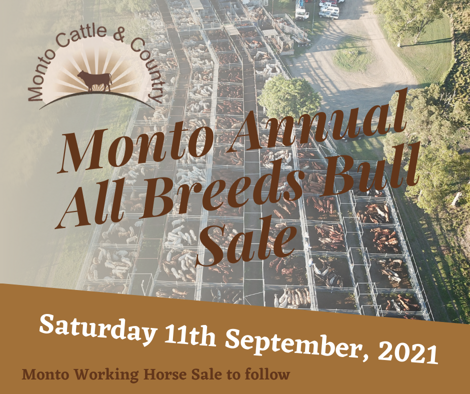 Monto Annual All Breeds Bull Sale + Working Horse Sale