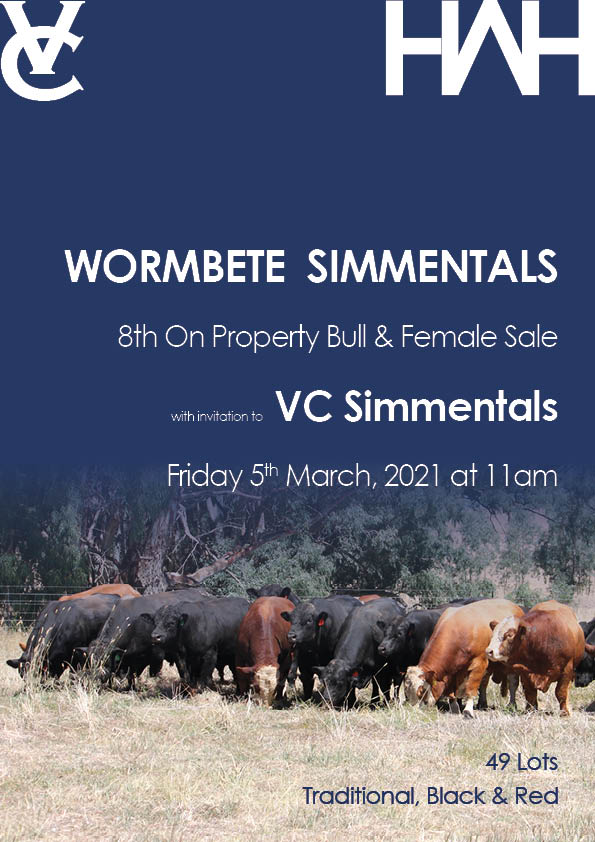 Wormbete Simmentals Bull & Female Sale with invitation to VC Simmentals