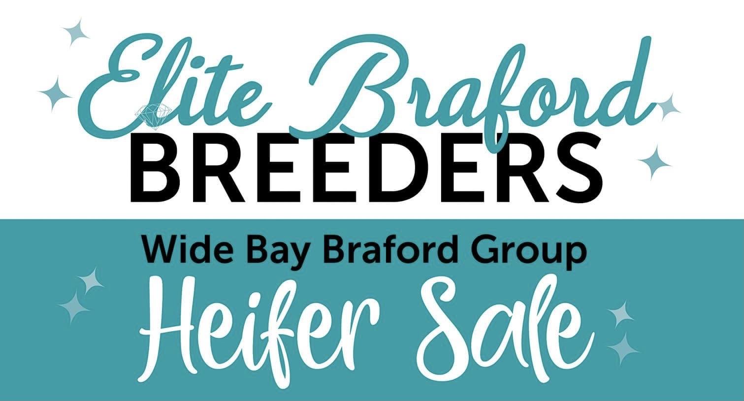 Elite Braford Breeders Heifer Sale