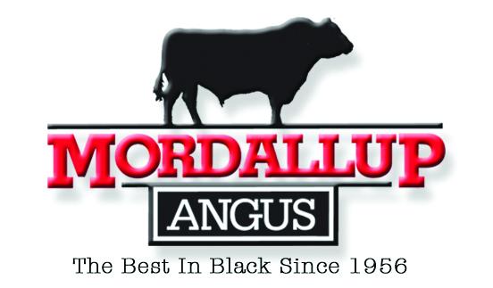 Mordallup Angus Bull Sale - Boyanup