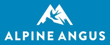 Alpine Angus Spring Bull Sale