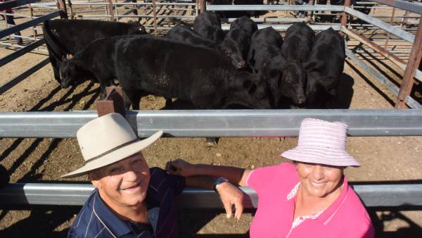 Tenterfield heifers to $1915