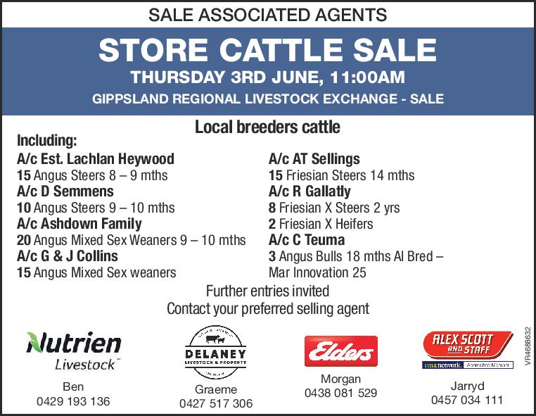 SALE ASSOCIATED AGENTS  STORE CATTLE SALE