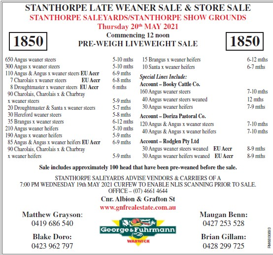 STANTHORPE LATE WEANER SALE & STORE SALE