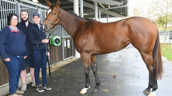 Two-million-dollar smiles as mare hits Gold Coast sale
