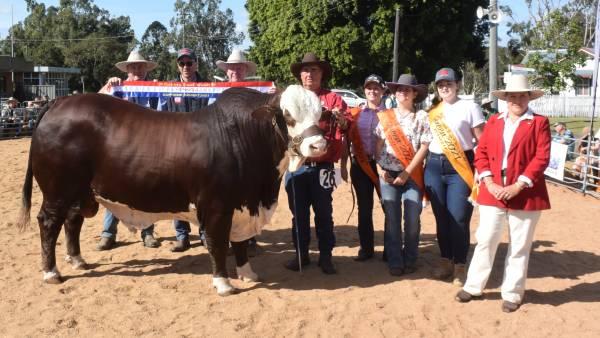 Braford king of Casino Beef Week
