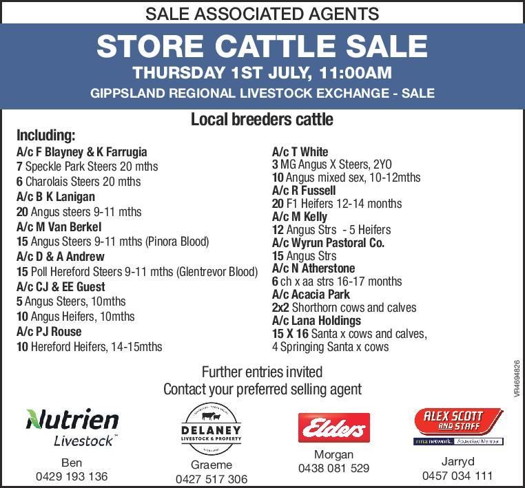 STORE CATTLE SALE GIPPSLAND REGIONAL LIVESTOCK EXCHANGE - SALE