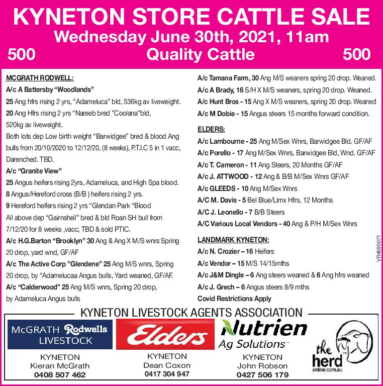KYNETON STORE CATTLE SALE