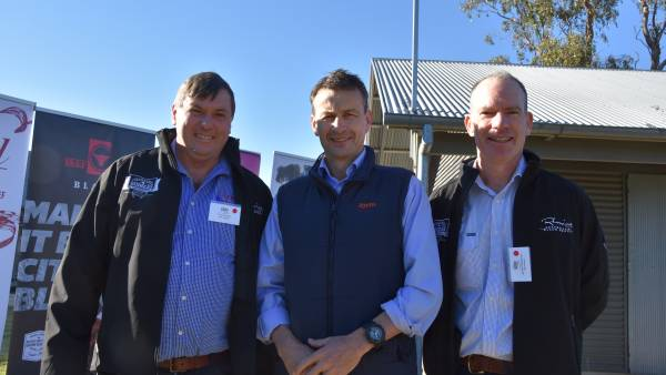 RNA Paddock to Palate weighs out of Beef City
