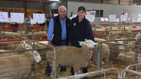 Australian record for Border Leicester ewes smashed
