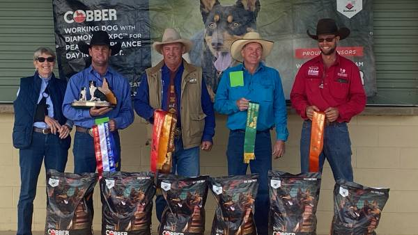 NBPE 2021: Qld Working Cattle Dog Trial Championships   Results