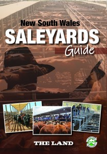 NSW SY guide