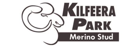 Kilfeera Park Merino Ram Sale