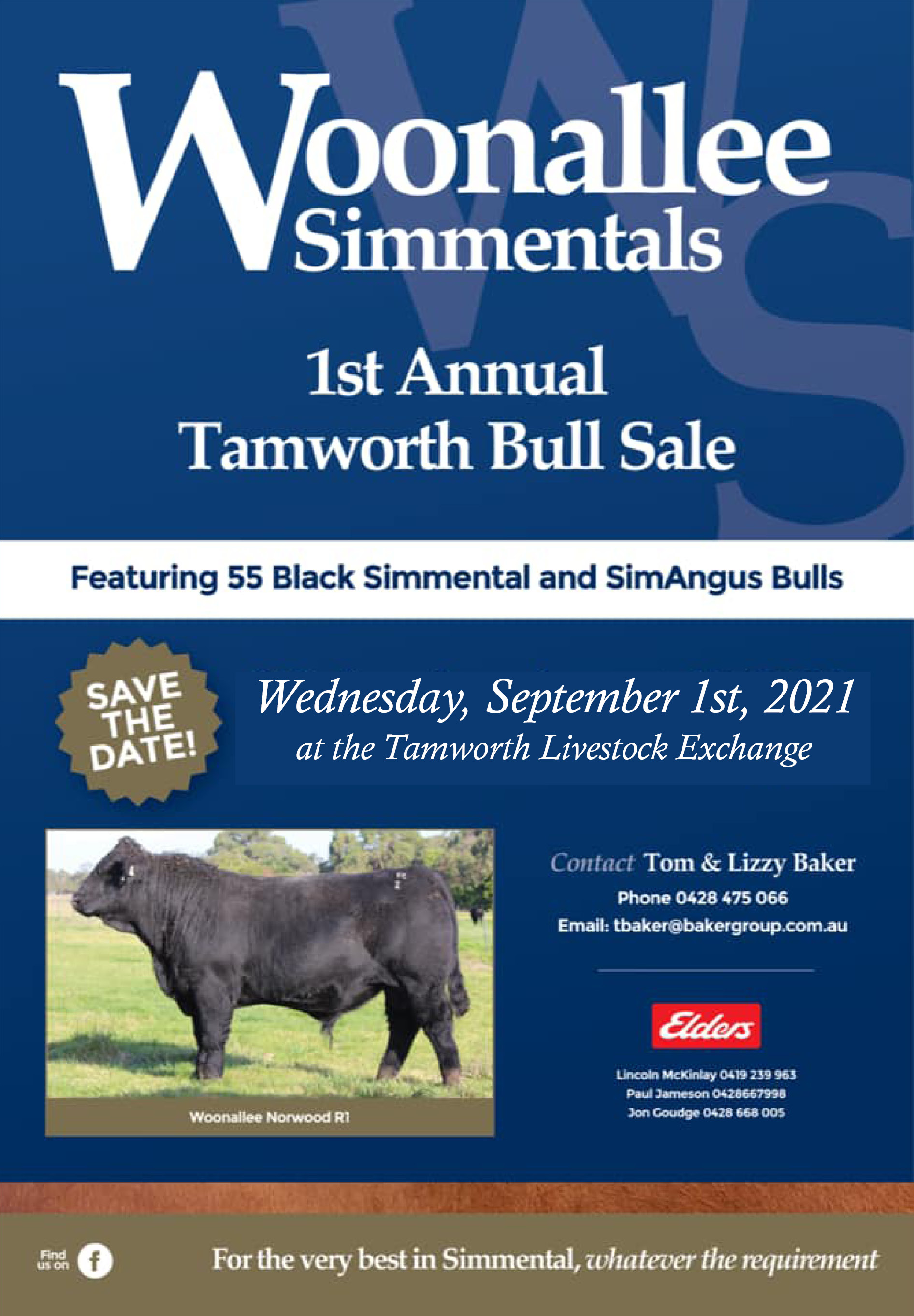 Woonallee Simmentals 1st Annual Tamworth Bull Sale