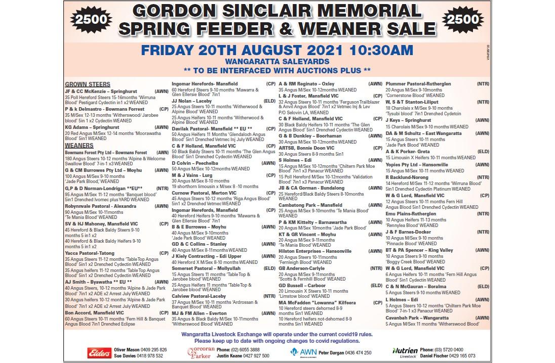 GORDON SINCLAIR MEMORIAL SPRING FEEDER & WEANER SALE  WANGARATTA SALEYARDS