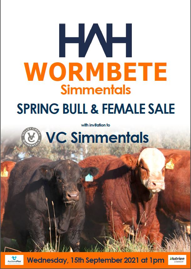 Wormbete Simmentals Spring Bull and Female Sale with Invitation to VC Simmentals