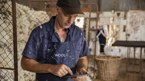 WoolQ to be commercialised