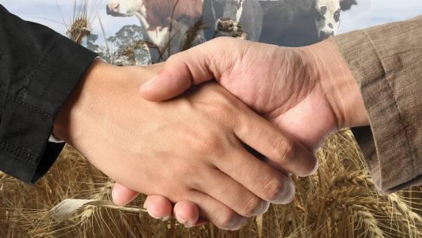 Fears of a farmer split over fake meat debate dismissed