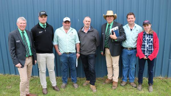 Landfall Angus records its best average as top bull hits $26,000