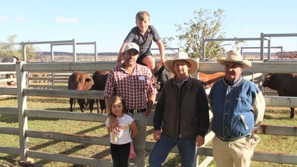 Hats and bids fly at Rosevale Santa Gertrudis bull sale