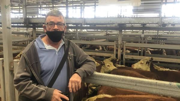 Wodonga steers to $2660