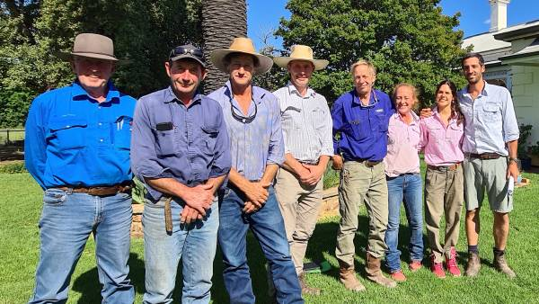 Dohne breed's sire trial set to assess reproduction, carcase traits