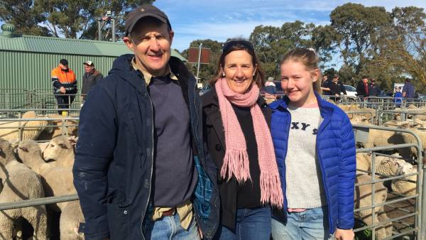 Lamb export markets show weighty recovery