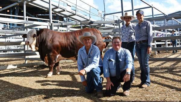 Braford National Sale hits $50,000 on two occasions